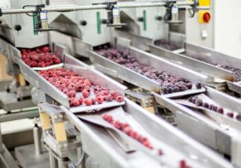 CL-1750-E-Food-Processing-Plant